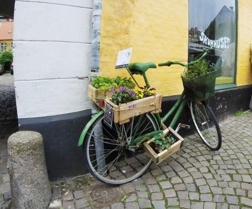 Danish Bike